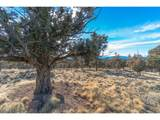 10980 Summit Ridge Ct - Photo 31