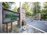 385 Pacific Dunes Dr - Photo 1