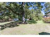 6685 Alfred St - Photo 1