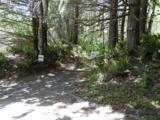 0 Lewis River Road - Photo 1