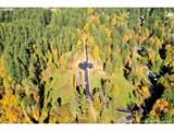 9 Maple Meadows - Photo 1