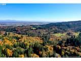 9 Maple Meadows - Photo 6