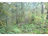 0 Old Pup Creek Rd - Photo 11