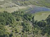 Trout Lake Creek Rd - Photo 12