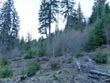 Trout Lake Creek Rd - Photo 15