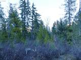 Trout Lake Creek Rd - Photo 17