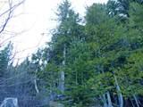 Trout Lake Creek Rd - Photo 19