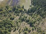 Trout Lake Creek Rd - Photo 8