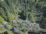 Trout Lake Creek Rd - Photo 9