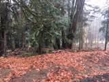 Maple Meadows - Photo 2