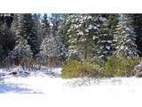 26 Aspen Highland Ct. - Photo 2