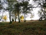 Wapiti Way - Photo 8