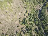 Trout Lake Creek Rd - Photo 10