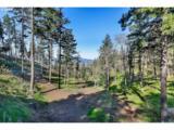 1340 Hidden Oaks Dr - Photo 3