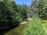 28940 Salmon River Hwy - Photo 1