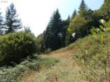 319 Hillsdale Dr - Photo 17