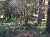 27358 Elk Park Rd - Photo 10