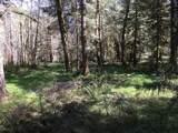 27358 Elk Park Rd - Photo 2
