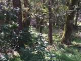 27358 Elk Park Rd - Photo 7