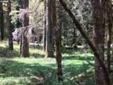 27358 Elk Park Rd - Photo 8
