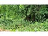 4504 Olive - Photo 1
