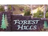 17 Forest Hills - Photo 2