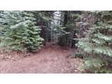 78307 Lincton Mountain Rd - Photo 1