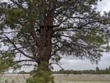 0 Yellow Pine Rd - Photo 14