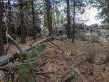 0 Yellow Pine Rd - Photo 4