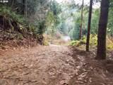 0 Daniels Creek Rd - Photo 2