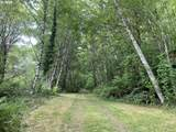 Trask River Rd - Photo 1