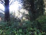 Manzanita Dr - Photo 5