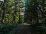 21000 Logie Trail Rd - Photo 29