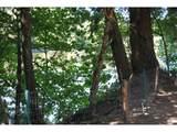 34360 Colorado Lake Dr 105 - Photo 12