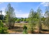 11541 Hawk Ledge Ln - Photo 29