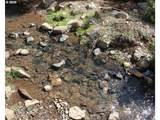 Quartz Mtn Pass 120 - Photo 6