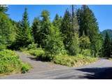 Bear Creek Lot 5,4 - Photo 1