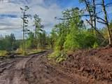Rattlesnake Rd - Photo 1