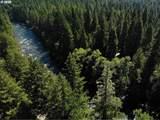 Mckenzie River Dr - Photo 13