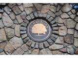 2101 Snowberry Ridge Ct - Photo 18