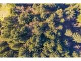 Windy Way - Photo 4