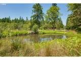 15462 Buckner Creek Rd - Photo 16
