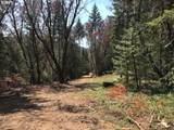 2320 Mcnabb Creek Rd - Photo 13