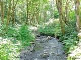 37717 Gordon Creek Rd - Photo 3