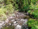 37717 Gordon Creek Rd - Photo 8