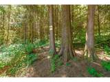 7853 Lewis River Rd - Photo 11