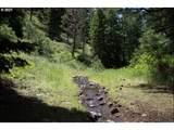 Little Black Butte - Photo 10
