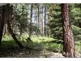 Little Black Butte - Photo 14