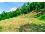 225 Summit Ridge Ln - Photo 3