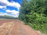 42480 Mount Pleasant 114Ac - Photo 24